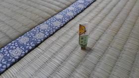 熊本県産の証
